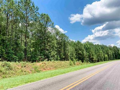 0 GOOLSBY RD, Monticello, GA 31064 - Photo 1