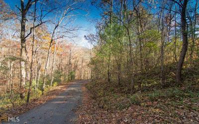 0 WHITE OAK FOREST, Hiawassee, GA 30546 - Photo 1