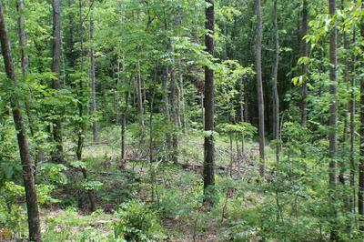 0 FULLER LOOP RD, Dallas, GA 30157 - Photo 2