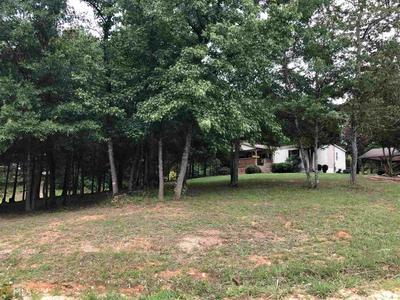 1098 KESLER RD, Carnesville, GA 30521 - Photo 2
