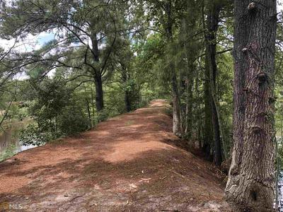 0 HIGHWAY 169, Claxton, GA 30417 - Photo 2