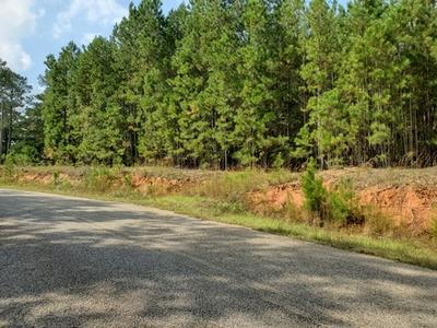 0 EDIE CREEK RD # 3, Barnesville, GA 30204 - Photo 1