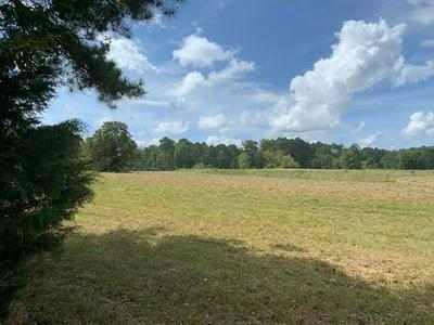 1181 MOORE RD, Griffin, GA 30223 - Photo 2
