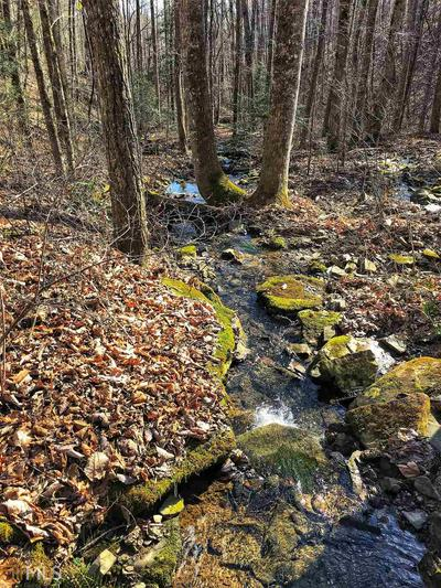 0 SNYDER LOOP RD, Graysville, TN 37338 - Photo 1