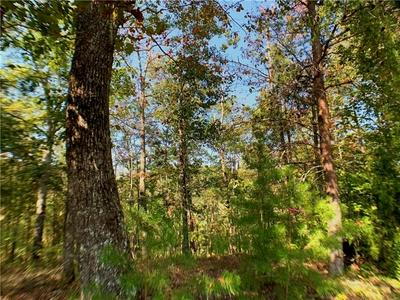 1404 FOXHOUND TRL NE, Ranger, GA 30734 - Photo 2