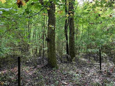 0 GROVE CREEK RD, Carlton, GA 30627 - Photo 2