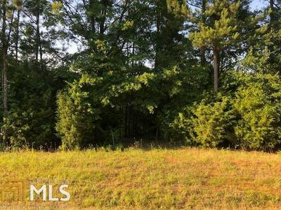 0 DAVIS ACADEMY RD # 4, Rutledge, GA 30663 - Photo 1