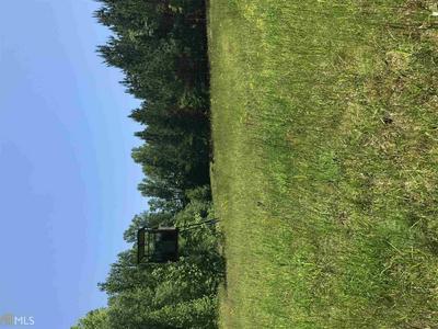4199 NEWTOWN RD, Tignall, GA 30668 - Photo 2