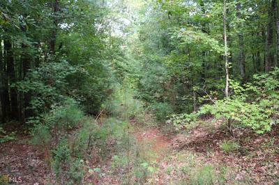 0 DAVIS ACADEMY RD # 4, Rutledge, GA 30663 - Photo 2