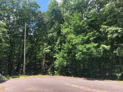 0 FARMVIEW RD # LOT 35, Ellijay, GA 30540 - Photo 2