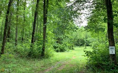 0 WHISPER WOODS, Hiawassee, GA 30546 - Photo 1
