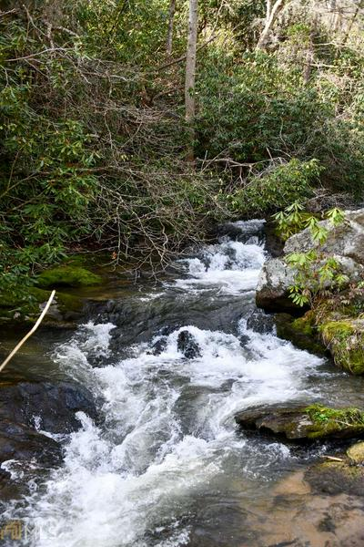 0 DILLARD RD, Scaly Mountain, NC 28775 - Photo 1