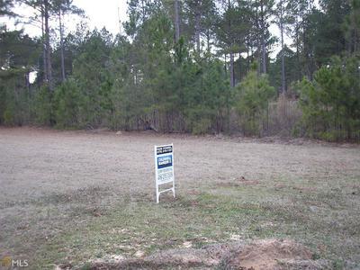 0 BOBBITT FARM RD TR C-1, Dudley, GA 31022 - Photo 1