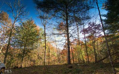 0 WHITE OAK FOREST, Hiawassee, GA 30546 - Photo 2
