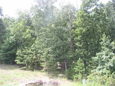 0 PLANTERS PT # LOT 1, Baldwin, GA 30511 - Photo 2