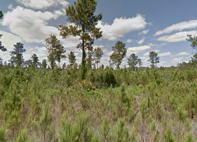281 SATILLA PLANTATION, Waynesville, GA 31566 - Photo 1