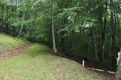 0 RABUN BRANCH RD, Scaly Mountain, NC 28775 - Photo 2