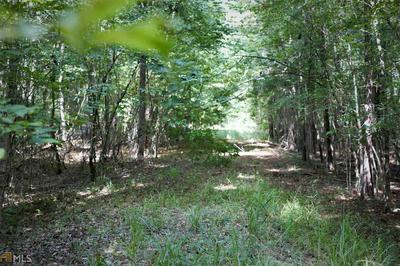 0 REIDS FERRY RD # TRACT 4, Buckhead, GA 30625 - Photo 2