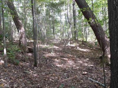 50 CASPIAN CT, Whitesburg, GA 30185 - Photo 2