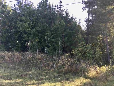 2721 N COLUMBIA ST # TRACT2-B, Milledgeville, GA 31061 - Photo 1