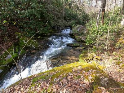 0 DILLARD RD, Scaly Mountain, NC 28775 - Photo 2