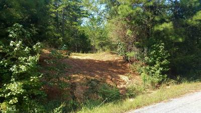 0 SUNFLOWER LN, Hartwell, GA 30643 - Photo 2