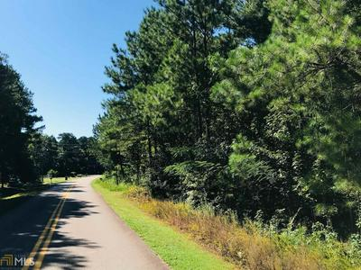 0 WHITEHEAD WAY, Flovilla, GA 30216 - Photo 2
