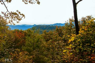 418 EASTSIDE DUCK MOUNTAIN RD, Scaly Mountain, NC 28775 - Photo 2