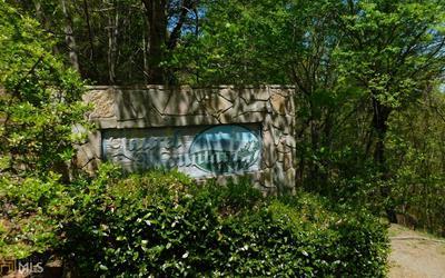0 PANTHER TRCE # LOT 23, Brasstown, NC 28902 - Photo 2