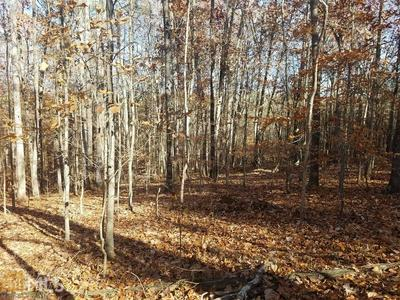 0 SPEARMAN RD, Roopville, GA 30170 - Photo 1