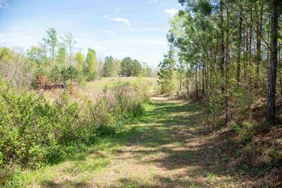 1738 UPPER COVE RD, Woodbury, GA 30293 - Photo 2