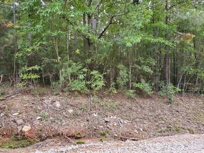 0 ENNIS RD, Barnesville, GA 30204 - Photo 2