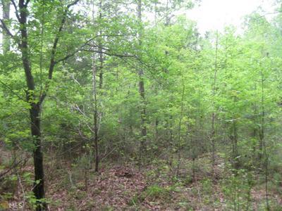 0 WALKER RD, Woodbury, GA 30293 - Photo 1