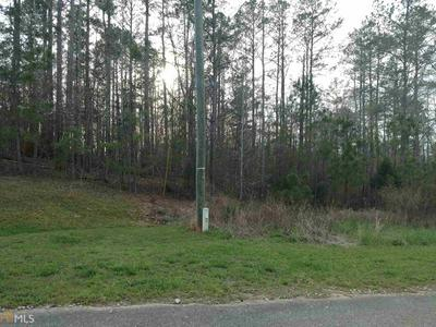 LOT 3 RIVER BEND DR # 3, Carlton, GA 30627 - Photo 2