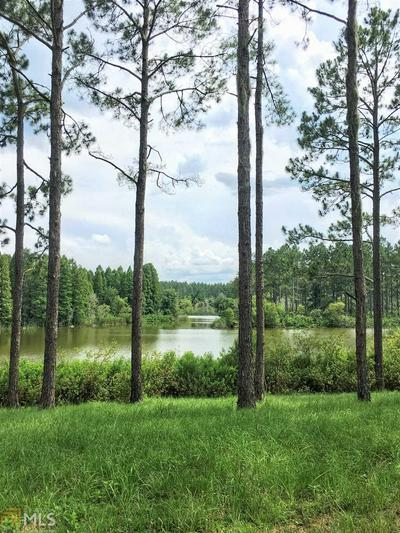 0 COUNTY ROAD 137, White Springs, FL 32096 - Photo 1
