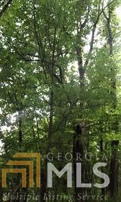 0 SHOAL CRK # 4B, Scaly Mountain, NC 28775 - Photo 1