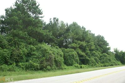 34.5 ACRES HIGHWAY 278 ., Greensboro, GA 30642 - Photo 2