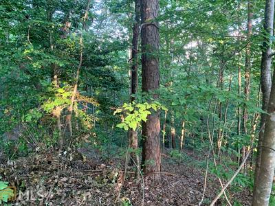 0 BUCK SNORT HEIGHTS HTS # LOT 43, Blairsville, GA 30512 - Photo 2