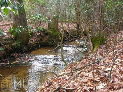5555 BLACK BEAR TRL, Big Canoe, GA 30143 - Photo 2
