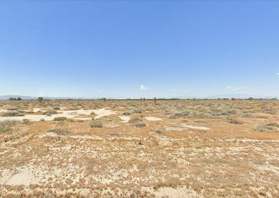 80TH ST EAST AND AVENUE H8, Lancaster, CA 93535 - Photo 2