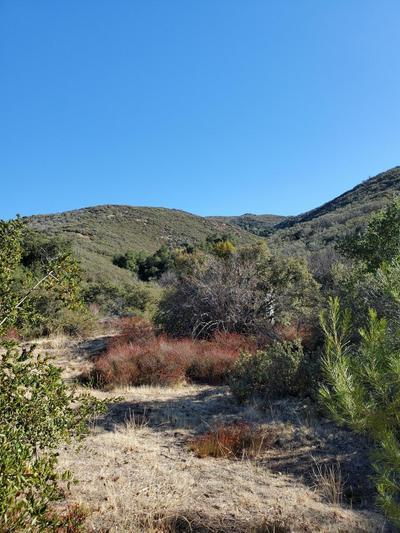 35192 BOUQUET CANYON RD, Santa Clarita, CA 91390 - Photo 2