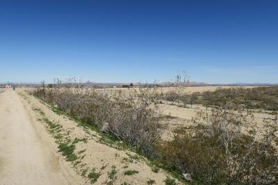VIC HAMPEL AVE 110TH STE, Pearblossom, CA 93553 - Photo 2