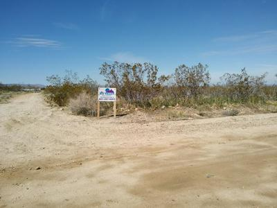 175TH ST EAST & AVE W14, Llano, CA 93544 - Photo 1
