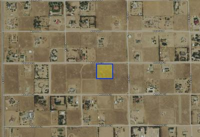 NEAR 86TH ST WEST & AVE D-10, Lancaster, CA 93536 - Photo 2