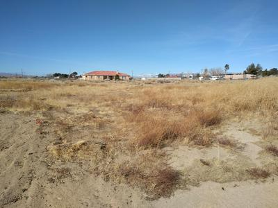 87TH ST WEST & AVE E1, Antelope Acres, CA 93536 - Photo 2