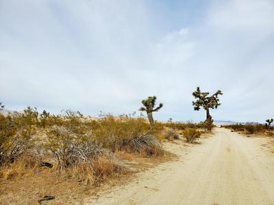 W 70TH ST. W. STREET, Mojave, CA 93501 - Photo 2
