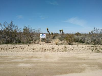 175TH ST EAST & W12, Llano, CA 93544 - Photo 1