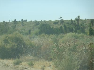 FORT TEJON, Llano, CA 93544 - Photo 2