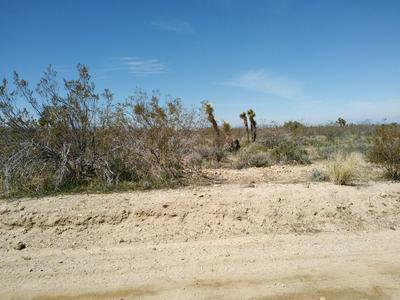 175TH ST EAST & W12, Llano, CA 93544 - Photo 2