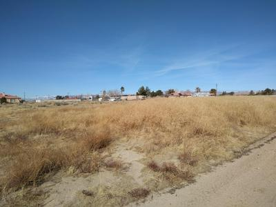 87TH ST WEST & AVE E1, Antelope Acres, CA 93536 - Photo 1